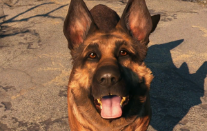 Fallout 4 dog wallpapers