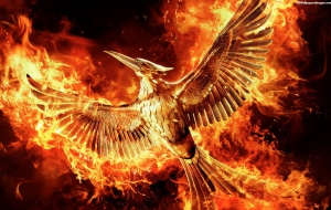 The Hunger Games: Mockingjay Part 2 High Quality Wallpapers