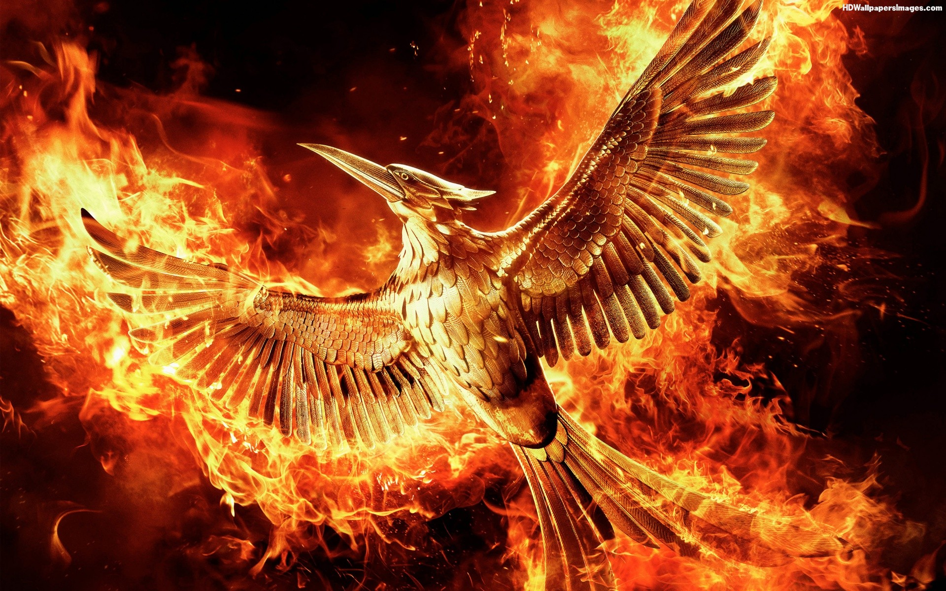 the hunger games mockingjay - part 2 mp4 download YES! 27 ...
