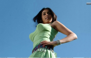 Genelia D'Souza High Quality Wallpapers