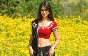 Ileana HD Wallpaper