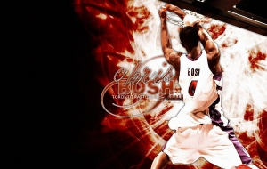 Chris Bosh HD Desktop