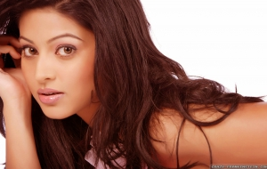 Sneha High Definition Wallpapers