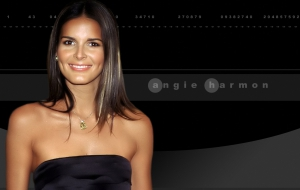 Angie Harmon Background