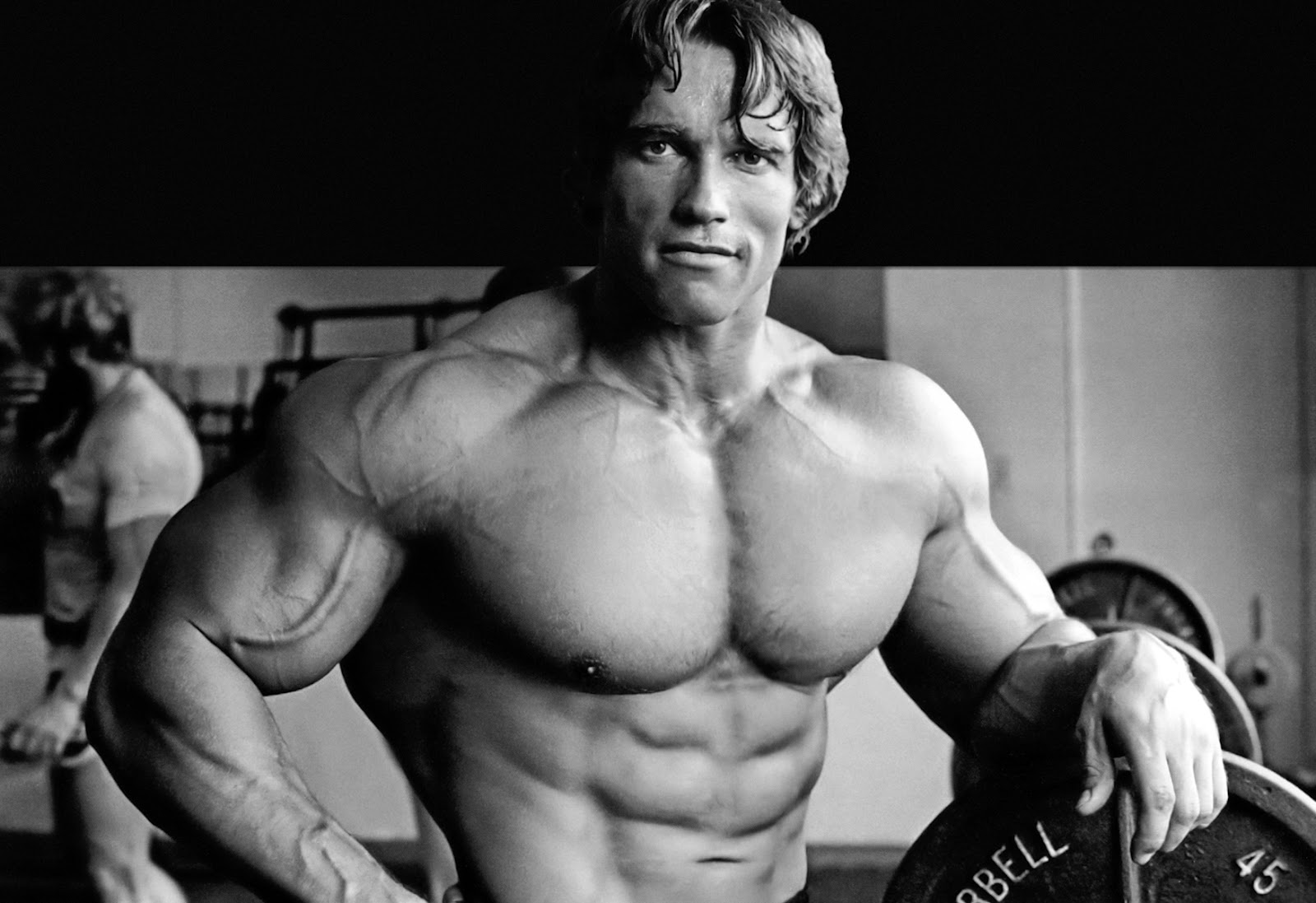 Arnold Schwarzenegger Wallpapers & Bio