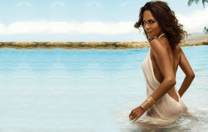 Halle Berry Computer Wallpaper