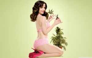 Mary Louise Parker Wallpaper