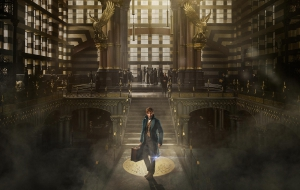 Fantastic Beasts And Where To Find Them High Quality Wallpapers