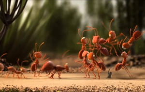 Antz High Quality Wallpapers