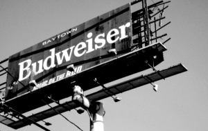 Budweiser Full HD