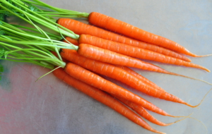 Carrots Background