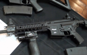 SIG Sauer 716 Rifle Pictures