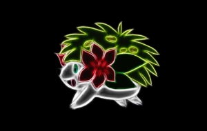 Shaymin Images