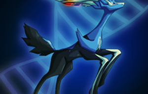 Xerneas High Definition