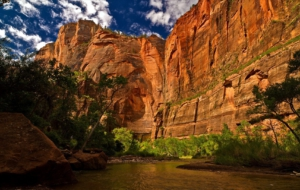 Zion National Park Images