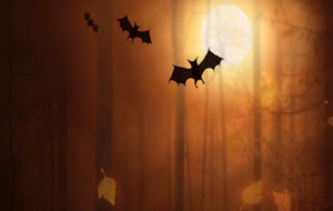 HD Halloween Wallpapers 18