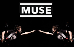 Muse High Quality Wallpapers