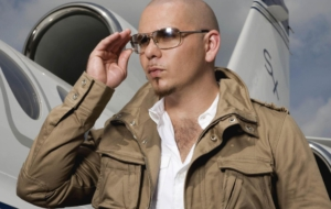 Pitbull High Definition Wallpapers