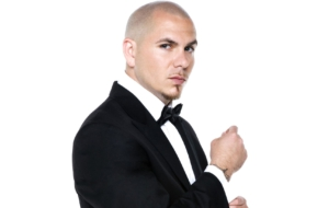 Pitbull High Quality Wallpapers