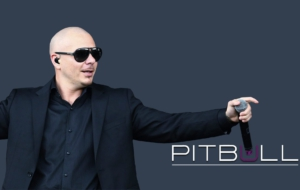 Pitbull Wallpapers