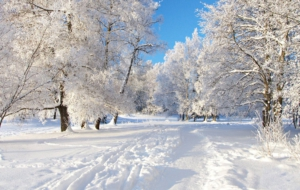 Winter High Definition Wallpapers