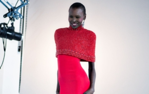Alek Wek HD Background