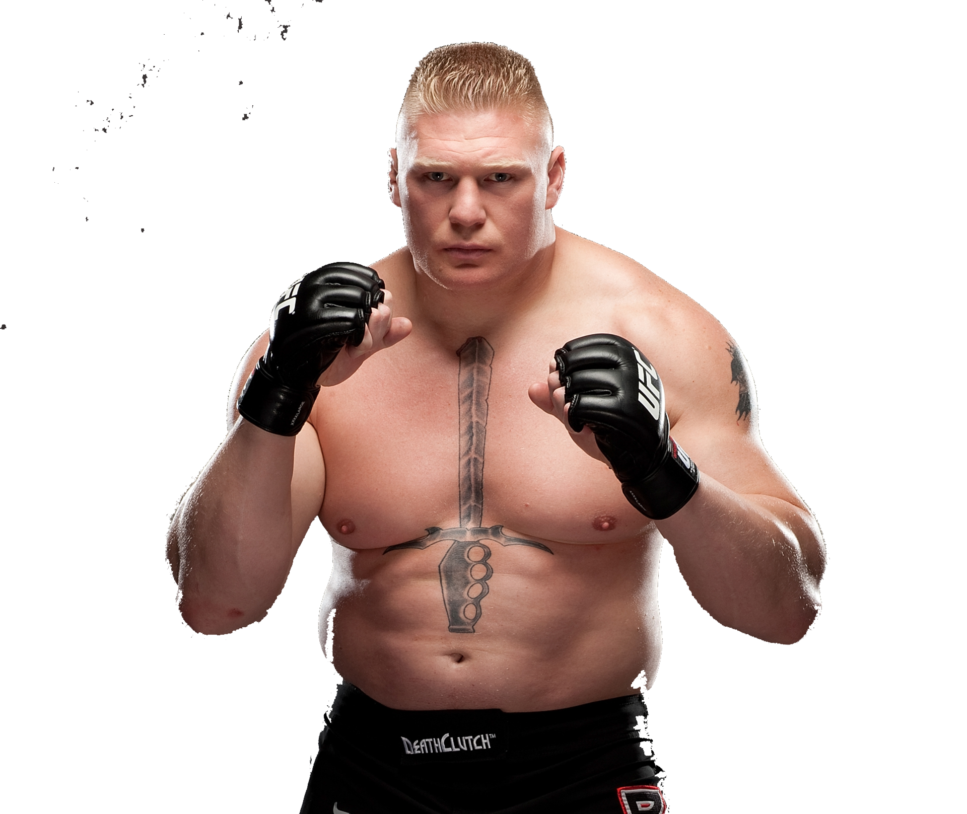 Grace Quality Cars >> Brock Lesnar phone, desktop wallpapers, pictures, photos, bckground images
