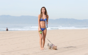 Audrina Patridge For Desktop