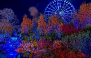 Amusement Park Download