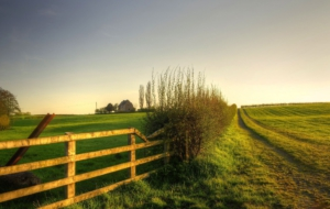 Fence Download