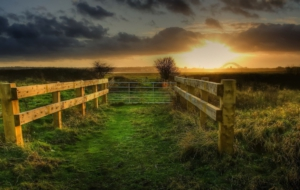 Fence Download Free Backgrounds HD