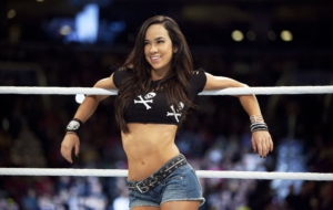 Pictures Of AJ Lee