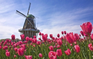 Windmill High Definition Wallpapers