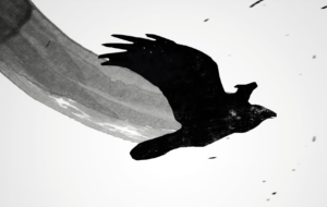 Crow Arts High Definition Wallpapers