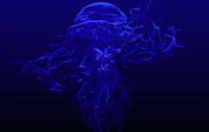Jellyfish Pictures