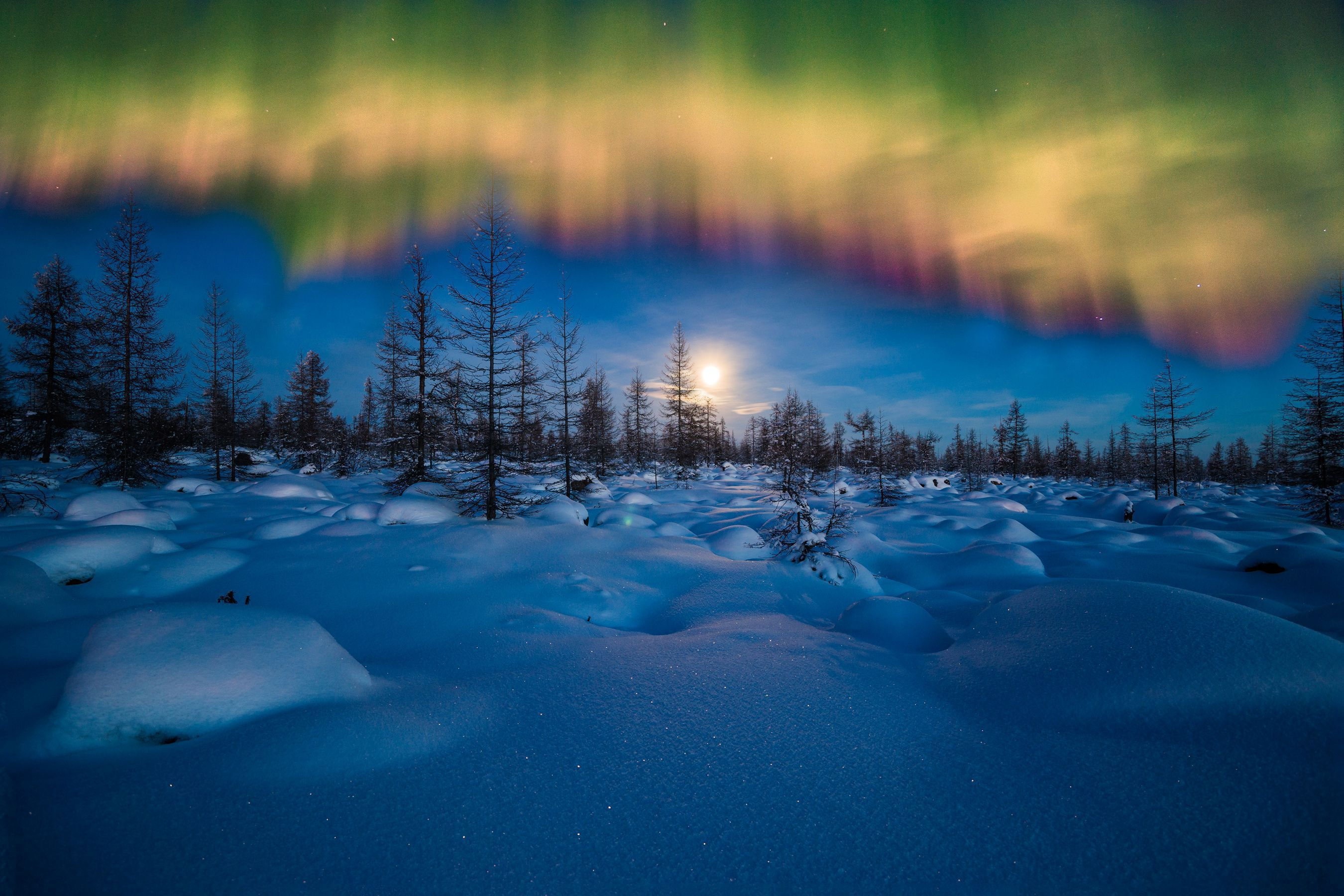 Winter Night Landscape With Polar Light Over The Forest