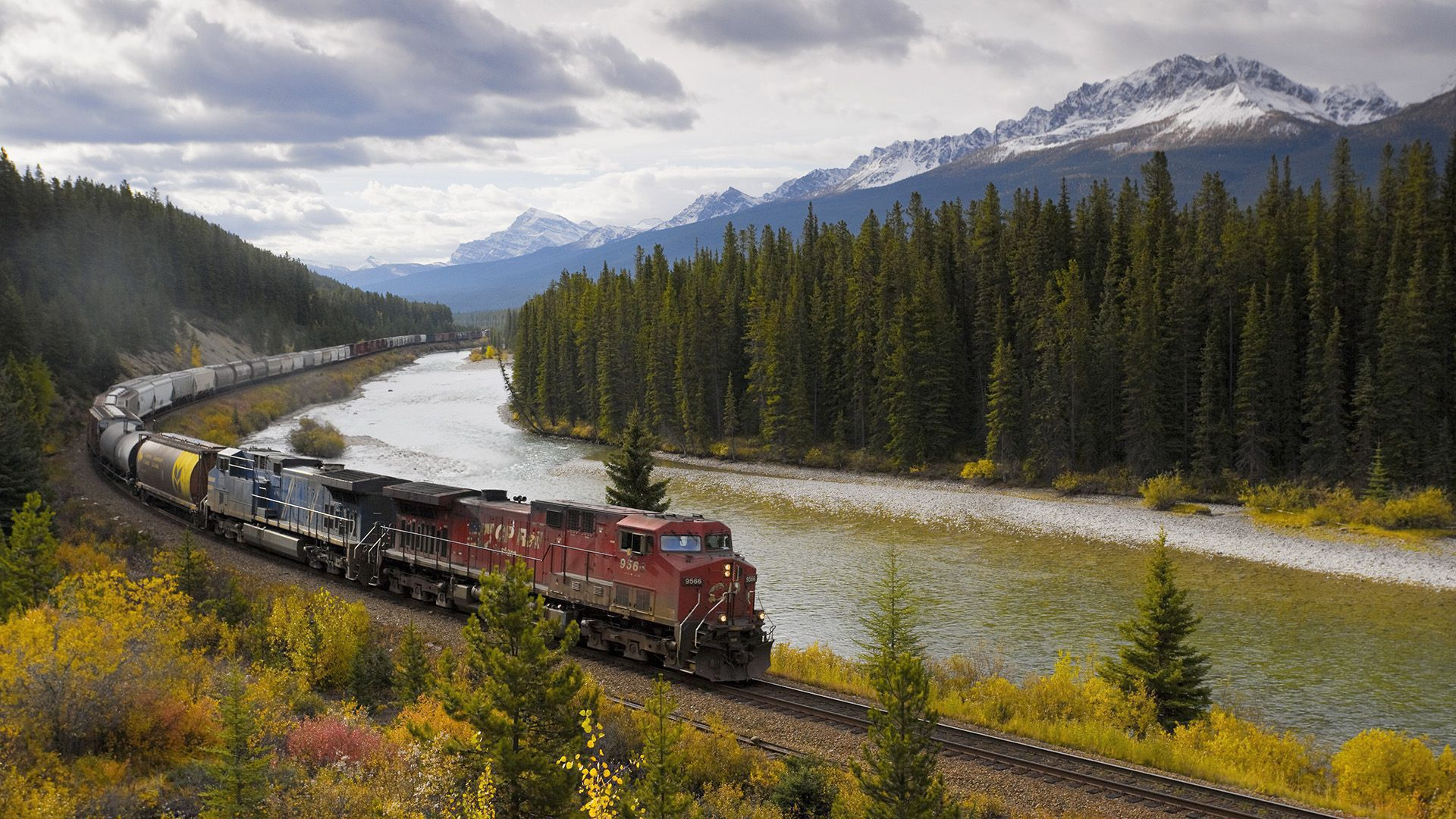 Freight Train Travelling Around Morants Curve, Bow Valley Parkway, Banff National Park, Alberta, Canada