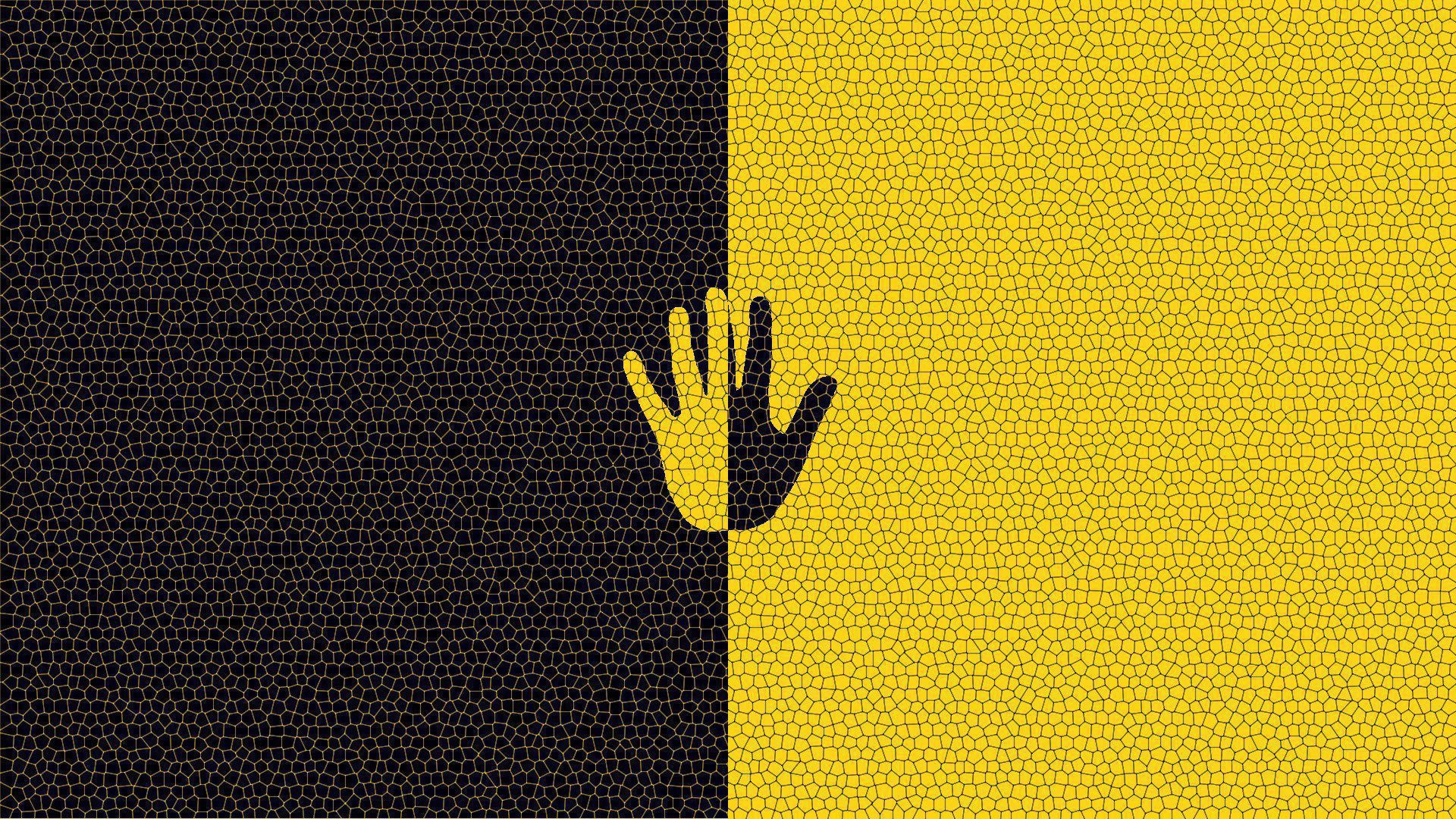 Black And Yellow Photos