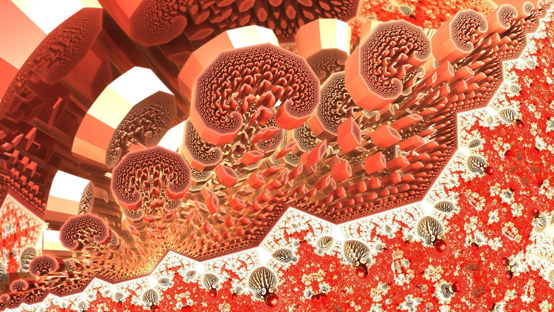 Blood Cells Computer Wallpaper