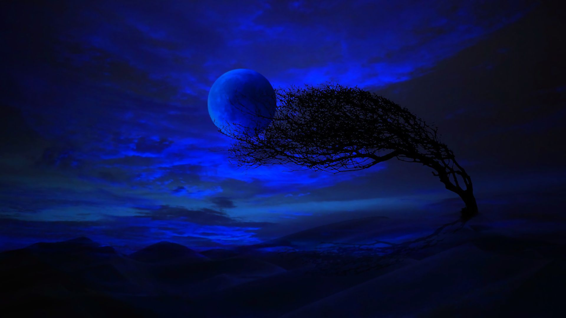 Blue Moon Wallpapers