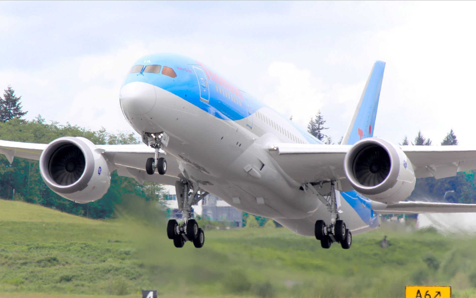 Boeing 787 Images