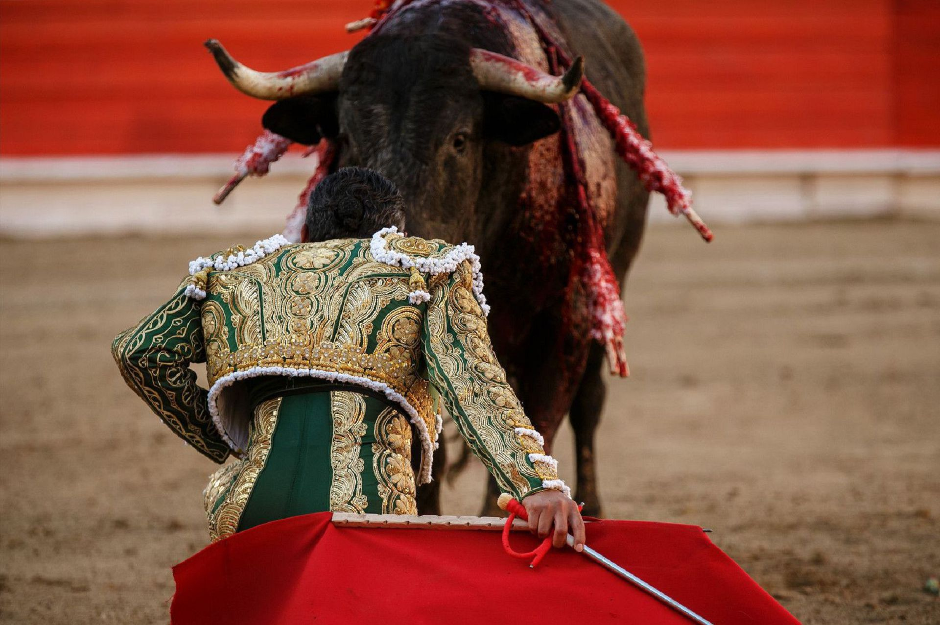 Bull Fighting High Definition Wallpapers