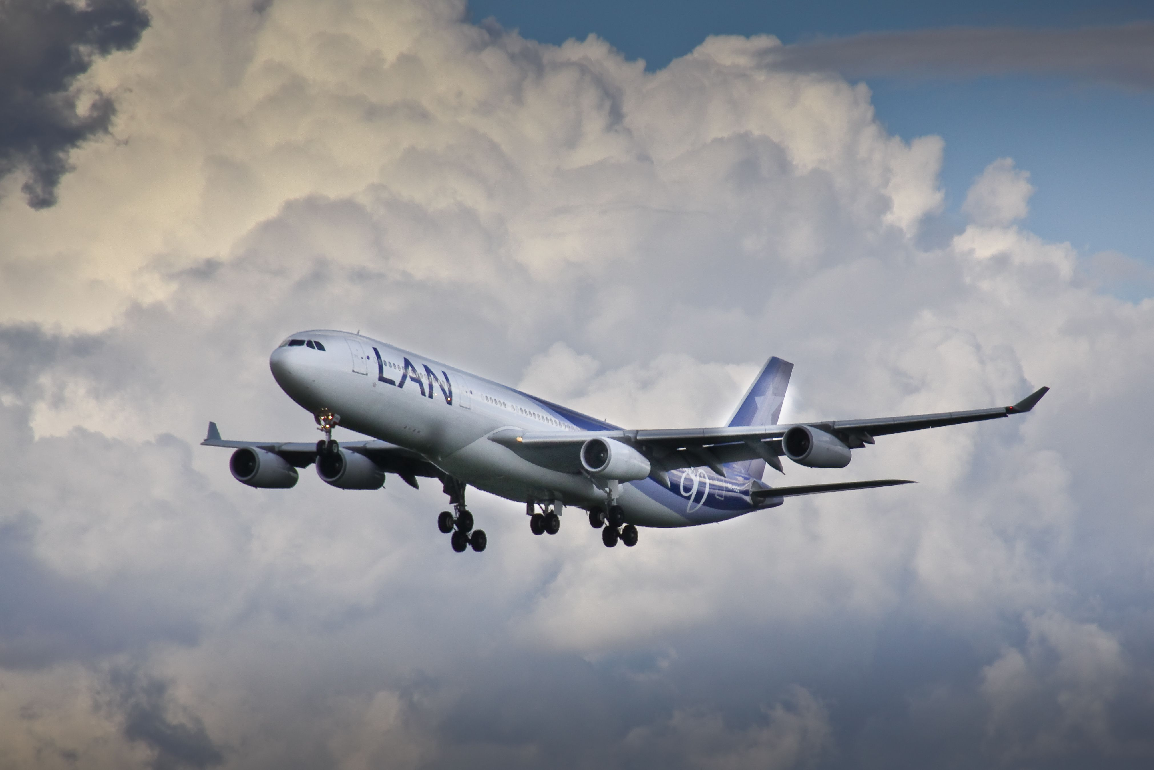 Picture Airbus A340