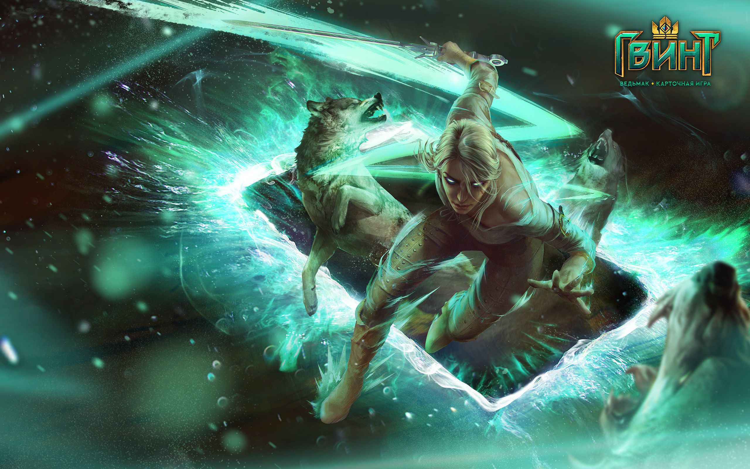 Picture Gwent The Witcher Card Game
