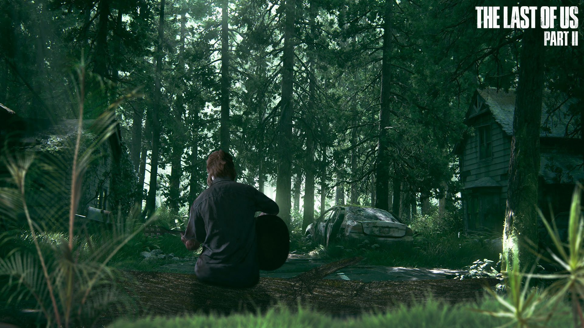 The Last Of Us Part 2 Widescreen