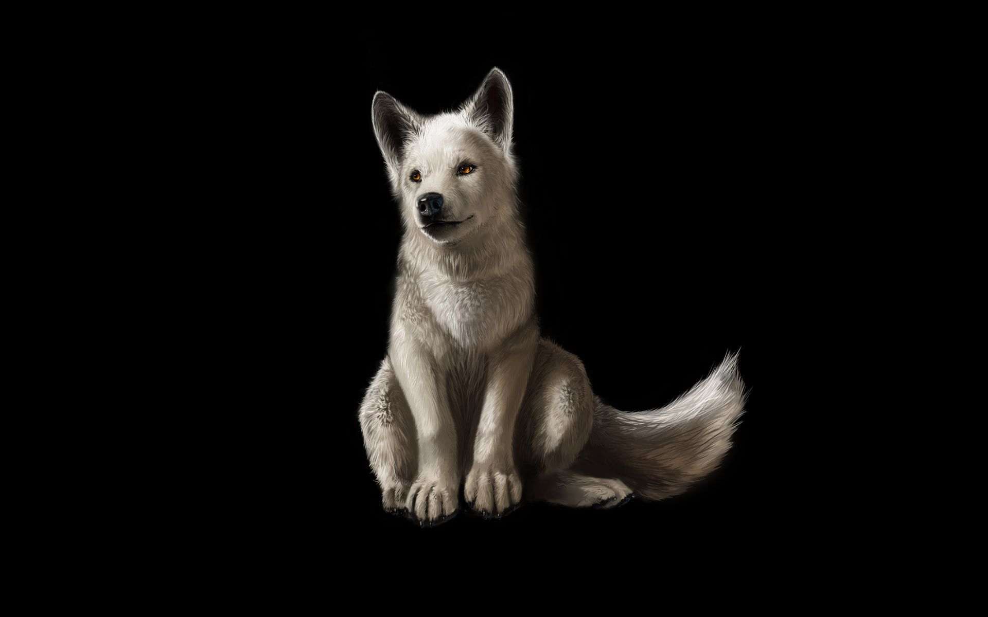 Baby Wolf Wallpapers HD