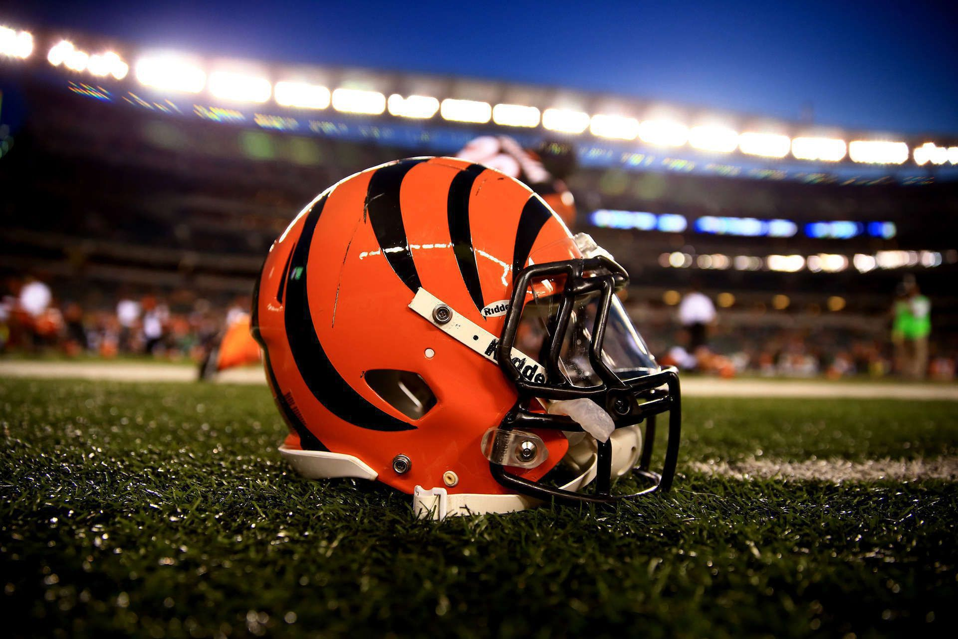 Bengals Background