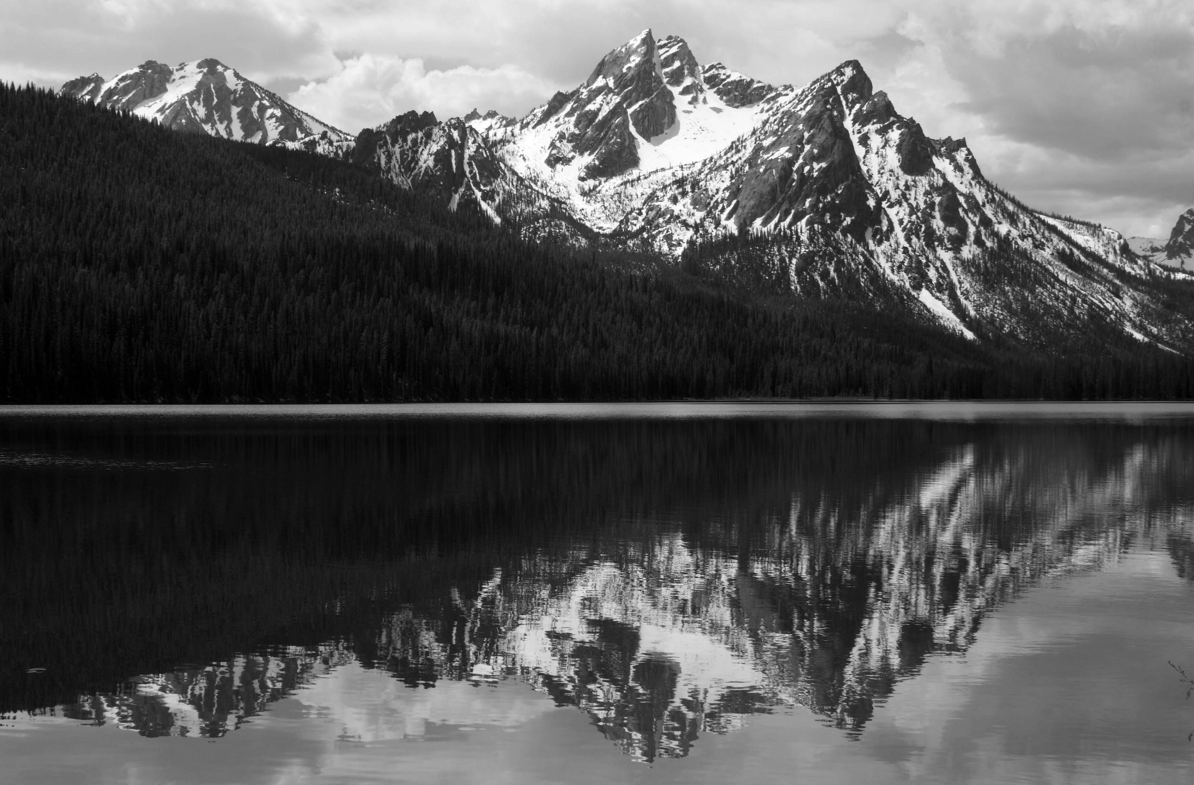 Ansel Adams Images