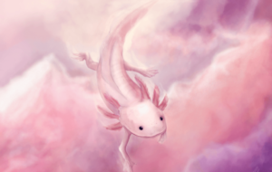 Axolotl Wallpapers For Android
