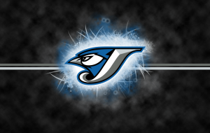 Blue Jay Wallpapers HQ